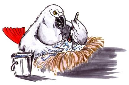 cartoon African Grey parrot wetting down a nest with a brush