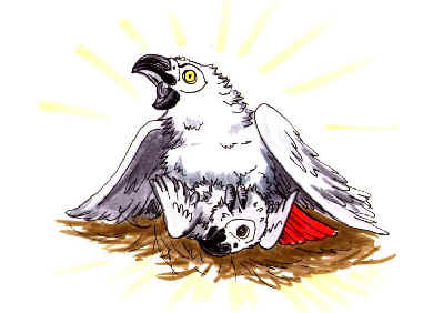 cartoon mother African Grey defending nest with chick